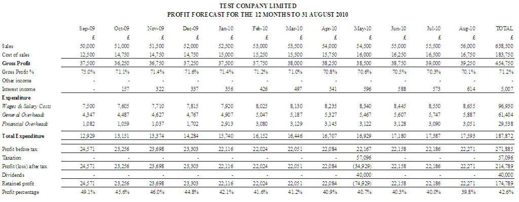 Doc509736 Profit and Loss Forecast Template Profit and Loss – P and L Report Template