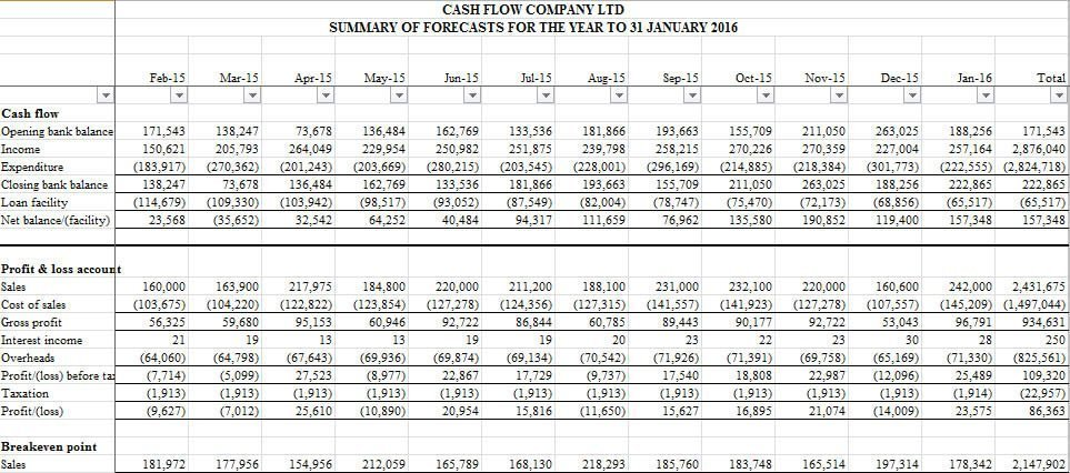 Cash and profit forecast summary report