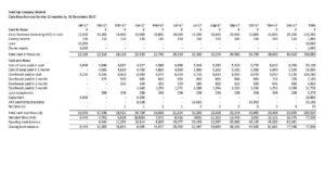 The Startup Cash Flow Projection Template - Cash Flow Report - Cash Flow Report
