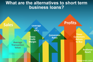 What are the alternatives to short term business loans